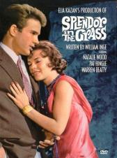 """Splendor in the grass"" directed by Elia Kazan (1961)"